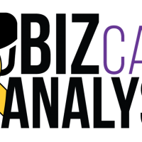 bizcare-analysis-bebas