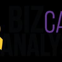bizcare-analysis-bebas