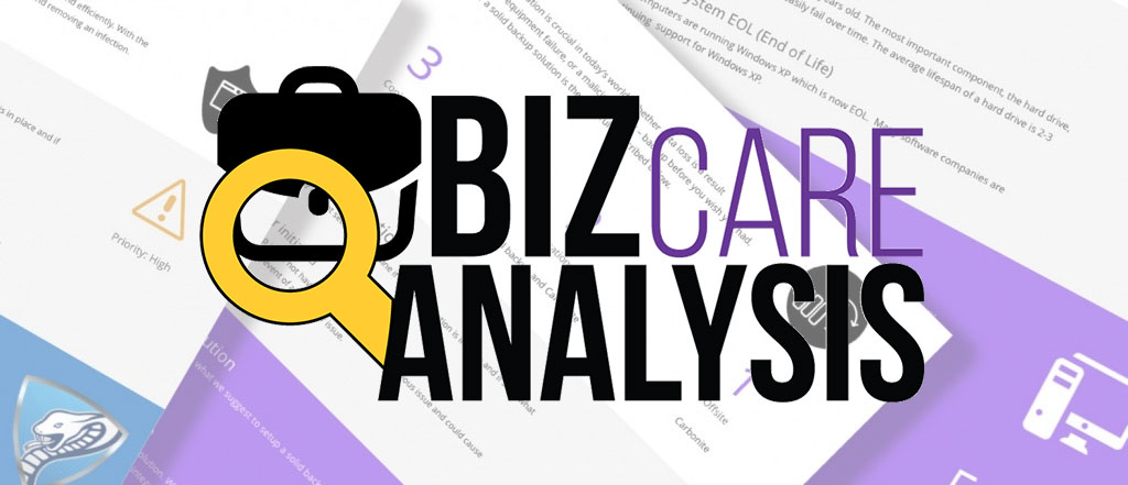 Introducing the BizCare Analysis